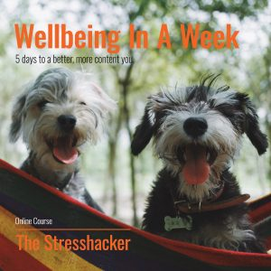 Wellbeing In A Week, online course, the stresshacker